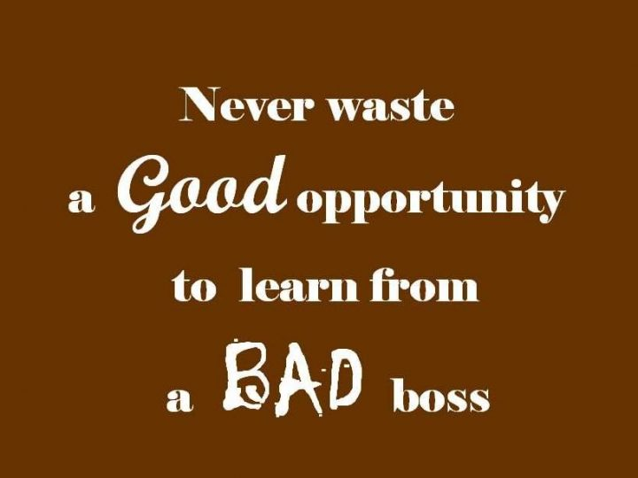 Bad Bosses Are The Best Teachers